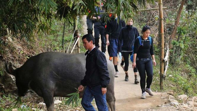 Kunjungan Mark Zuckerberg ke Vietnam