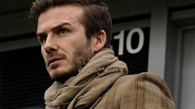 David Beckham Showbiz