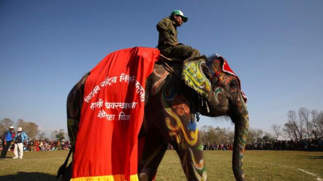 Festival Gajah Internasional di Nepal