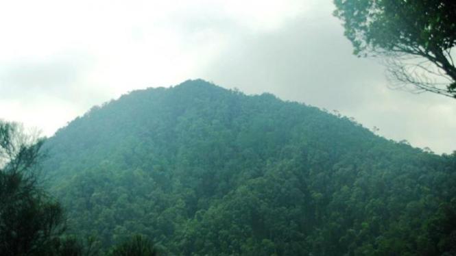 Puncak Gunung Jadi Riau
