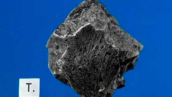 Meteorit Mars yang ditemukan di Maroko