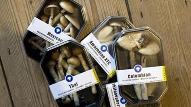 Magic mushroom yang dijual dalam kemasan di Rotterdam, Belanda
