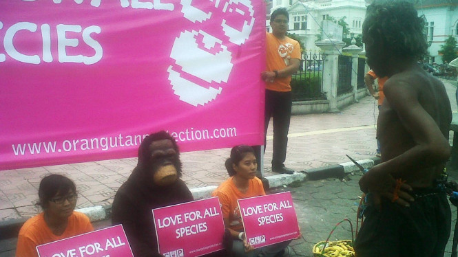 Demo Orangutan di hari Valentine