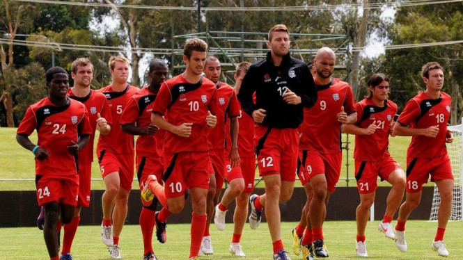 Adelaide United saat latihan