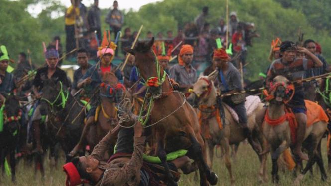 Festival Perang Pasola