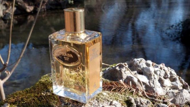 Prada Infusion d'Iris de Parfum Absolue.