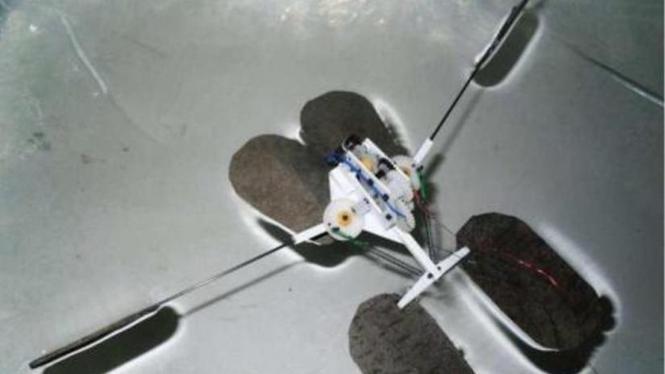 """robot itu  """"berselancar"""" di air dengan kecepatan 2.6 mil per jam"""