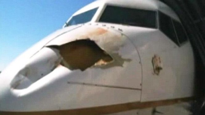 Hidung pesawat penyok dan bolong akibat tertabrak burung