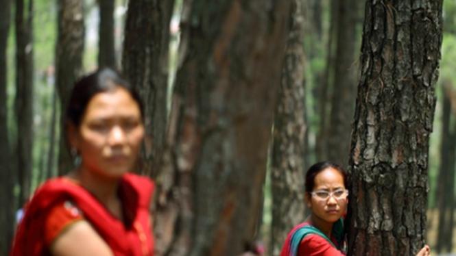 Perempuan Nepal memeluk pohon di Kathmandu