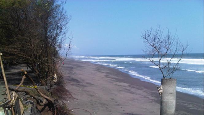 Abrasi di pantai Kuwaru Yogyakarta