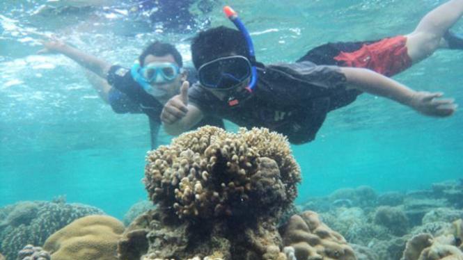 Menikmati keindahan bawah laut dengan snorkeling