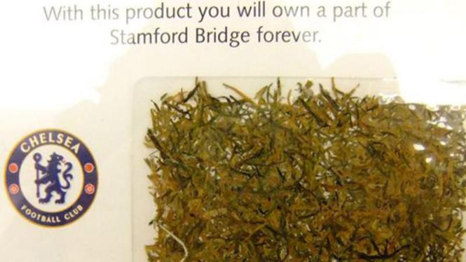 Rumput Stamford Bridge