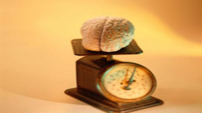ilustrasi otak di atas timbangan