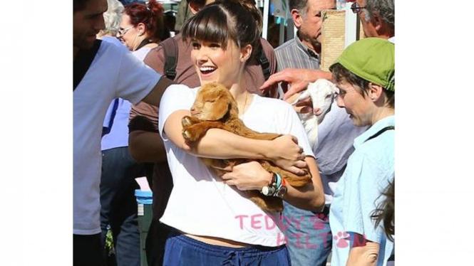 Sophia Bush memeluk anak kambing.