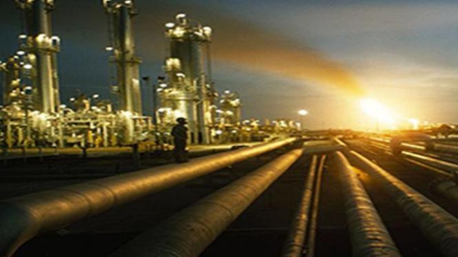 Aktivitas di Kernel Oil
