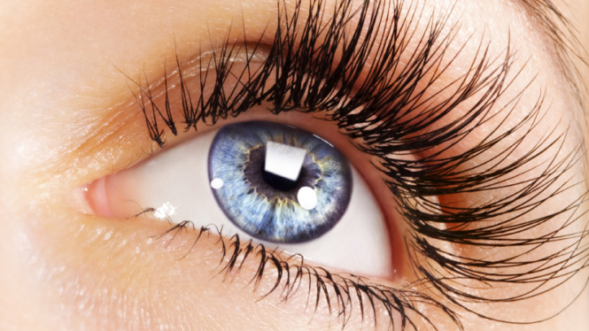 Mata biru atau bulu mata lentik