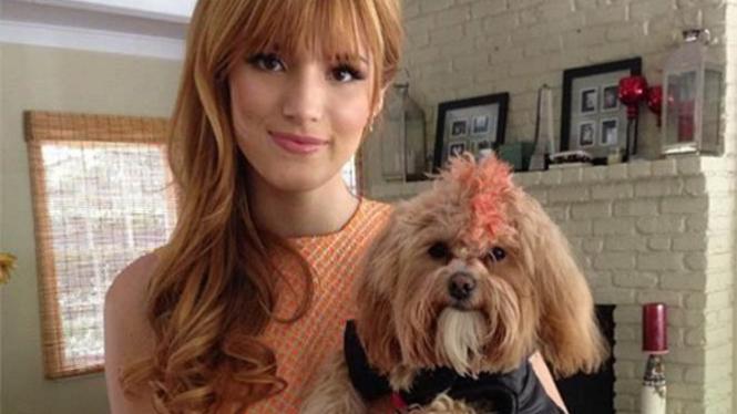 Artis Bella Thorne dan Anjing Kesayangannya