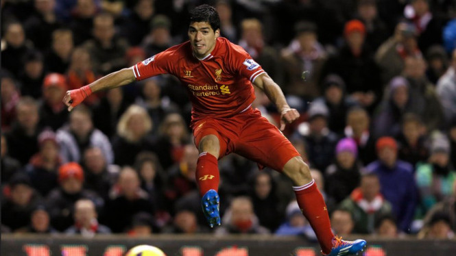 Striker Liverpool, Luis Suarez, saat melawan Norwich