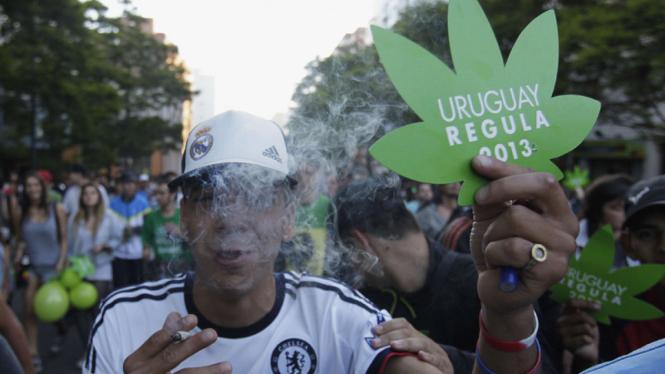 Uruguay resmi legalkan ganja