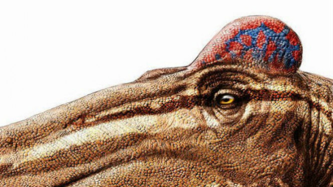 Dinosaurus Edmontosaurus.