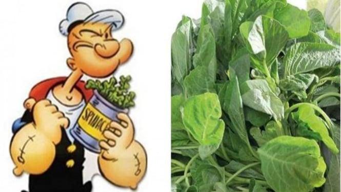 Popeye dan Sayur Bayam