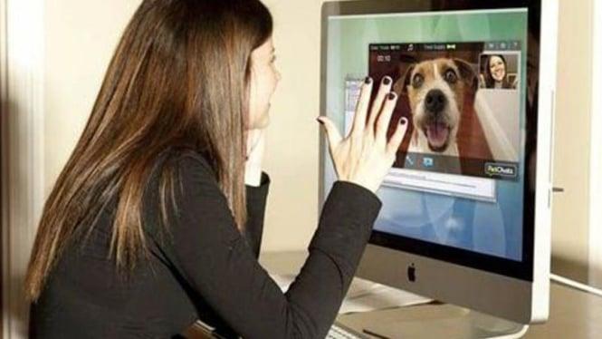 PetChatz, perangkat chatting dengan hewan kesayangan
