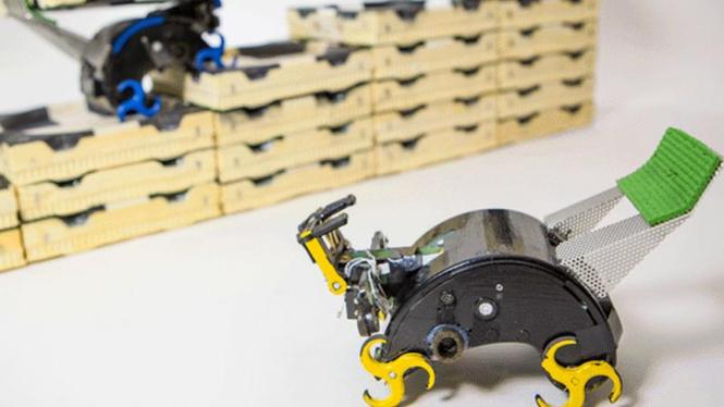 Robot rayap yang bisa membangun menara atau piramida