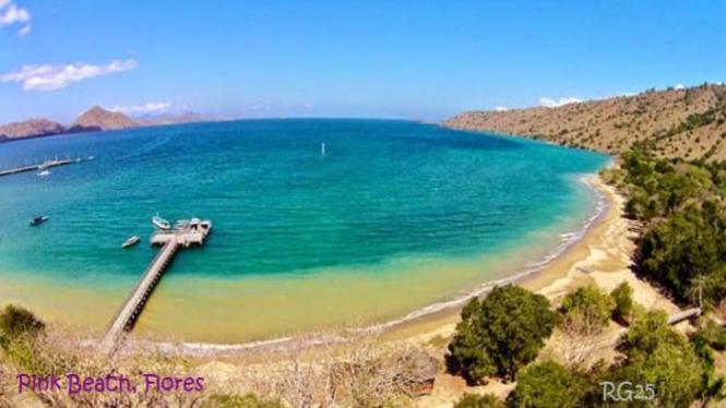 Menikmati Panorama Indah Pink Beach Di Flores
