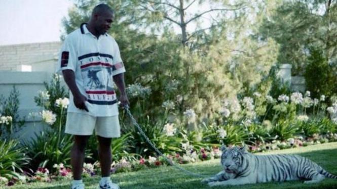 Mike Tyson dan macan