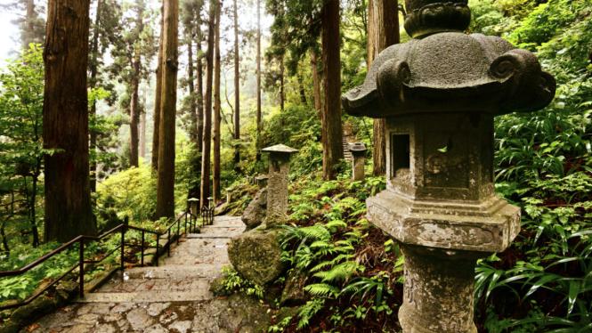 Hutan Jepang