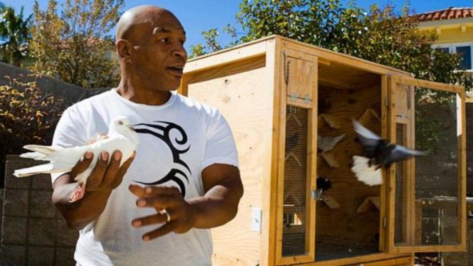 Mike Tyson dan hewan peliharaan