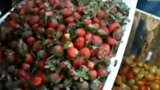 Tradisi cambok atau melempar buah stroberi dan tomat.