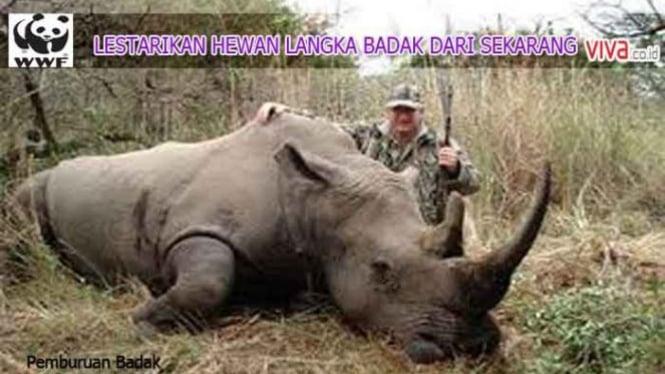 500+ Gambar Binatang Badak Sumatera Terbaik