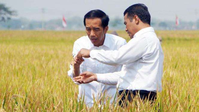 Presiden Jokowi dan Mentan Andi Amran Sulaiman.