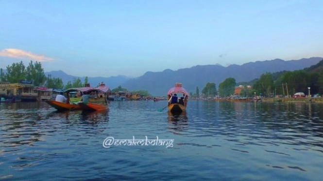 Danau Dal, Srinagar
