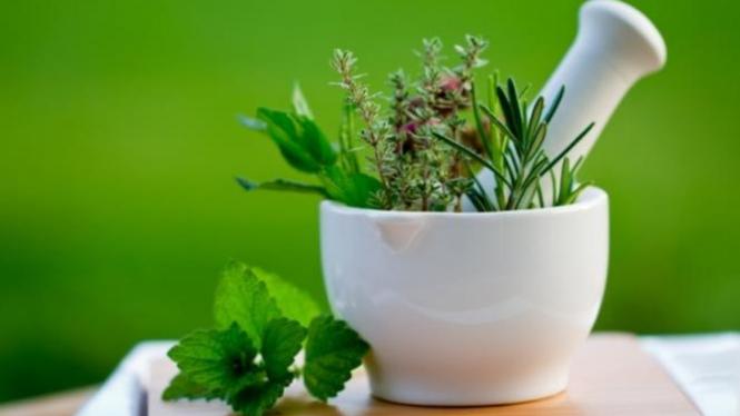 Bahan alami untuk obati penyakit.