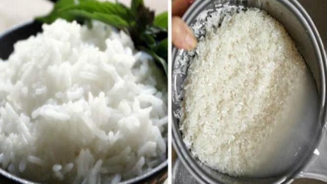 Beras dan nasi.