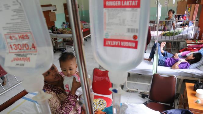 Pasien Demam Berdarah Dengue (DBD) Meningkat