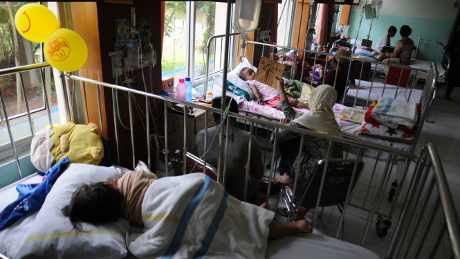 Pasien Demam Berdarah Dengue (DBD)