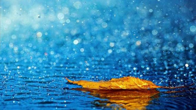 Hujan rintik/Ilustrasi.