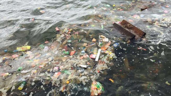 Diperkirakan, pada saat ini lautan dunia sudah berisi 150 juta ton plastik.