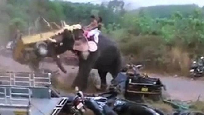 Gajah mengamuk rusak motor