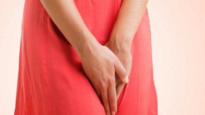 Ilustrasi organ intim wanita.