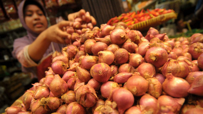 Pedagang menata bawang merah di kiosnya.