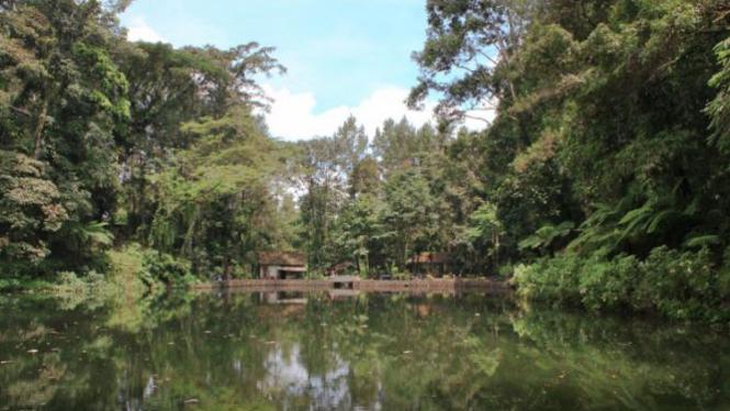 Rowo Bayu.