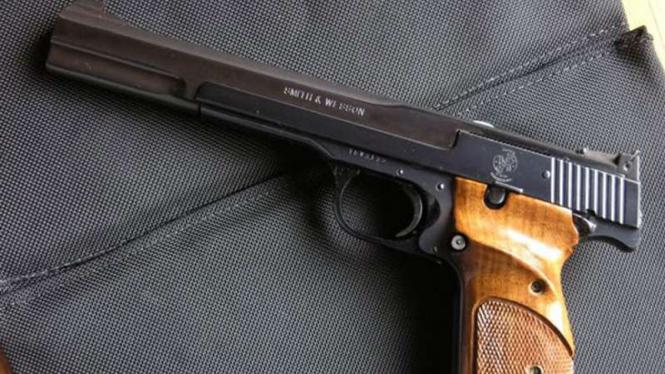 Pistol/Ilustrasi.