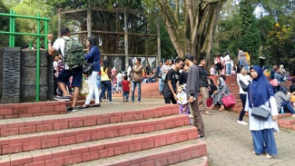 Suasana Kebun Binatang Kota Bandung Jawa Barat, Jumat, 8 Juli 2016.