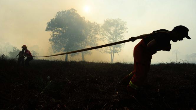 Ilustrasi/Proses pemadaman kebakaran hutan dan lahan di Kalimantan Barat