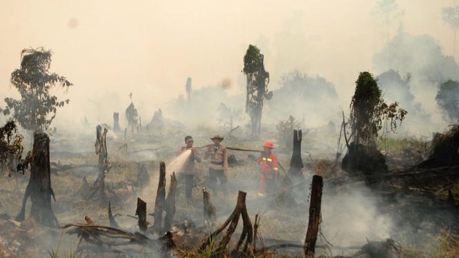 Lokasi Karhutla (Kebakaran Hutan dan Lahan) beberapa waktu lalu.