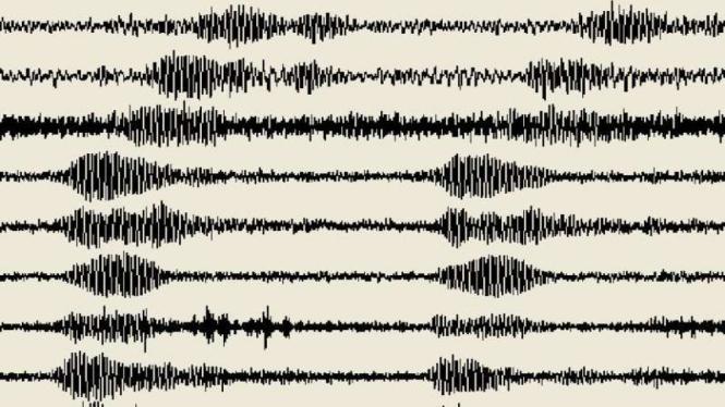 Ilustrasi/Grafik seismograf